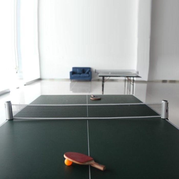 רשת פינג פונג ניידת