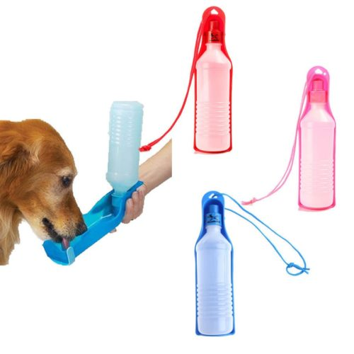 בקבוק לכלב