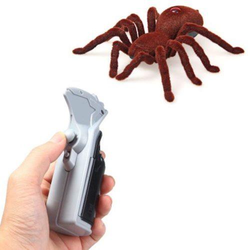עכביש על שלט רחוק