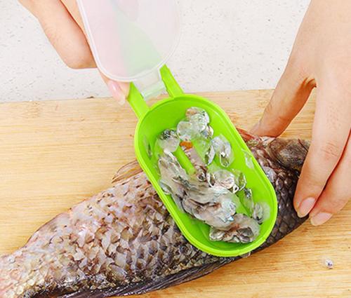 כלי לניקוי מקצועי ומהיר של דגים