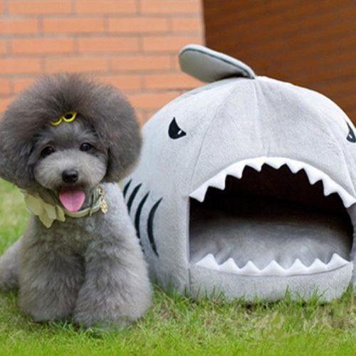 מיטה לכלב ולחתול בצורת כריש