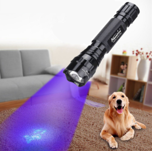 פנס LED עם תאורה אולטרה-סגולה