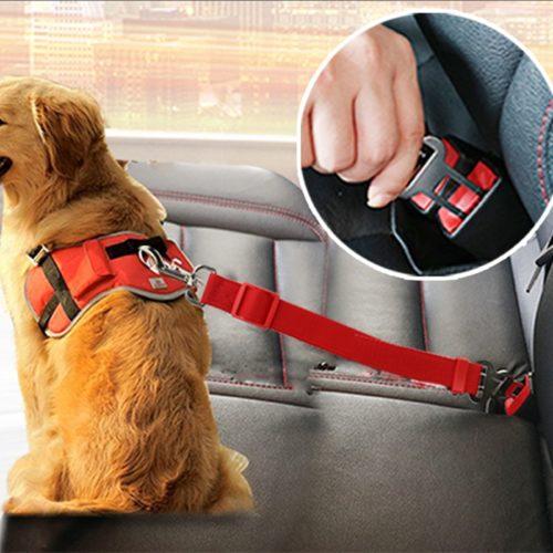 רצועת חגורה לכלב לנסיעה בטוחה ברכב
