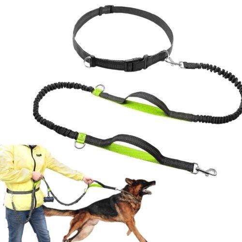 רצועה לכלב המתחברת לחגורה ללא צורך בשימוש בידיים