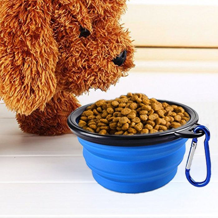 קערה מתקפלת להאכלת כלבים בטיולים