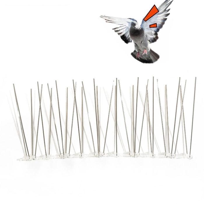 קוצים דוקרניים להרחקת יונים וציפורים