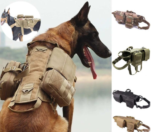 רתמה צבאית לכלבים