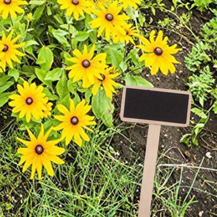 20 שלטים לגינה לסימון סוגי פרחים ועצים