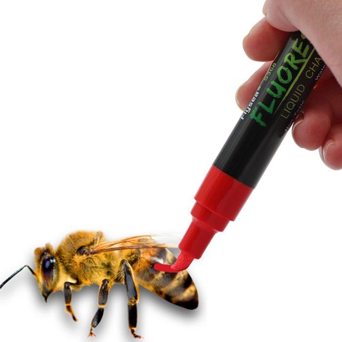 טוש לא רעיל לסימון מלכת הדבורים