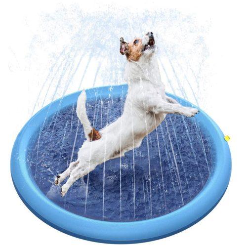 בריכה מתנפחת משפריצה מים לכלבים